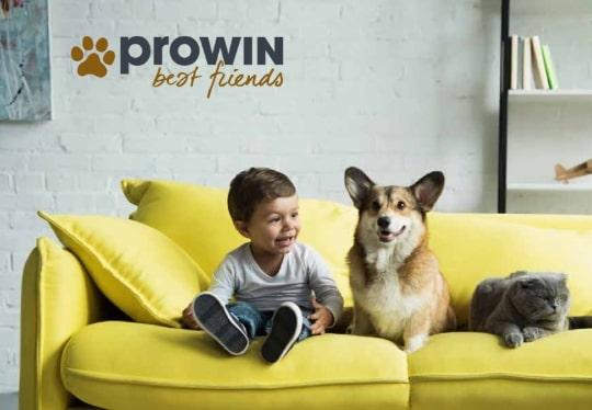 best-friends-prowin-giessen-1-min